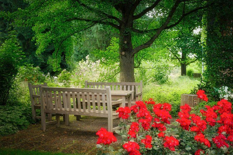 פנית ישיבה מעץ